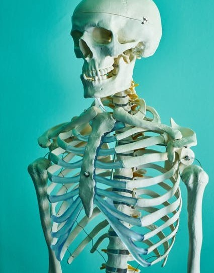 Bone density disease in seniors